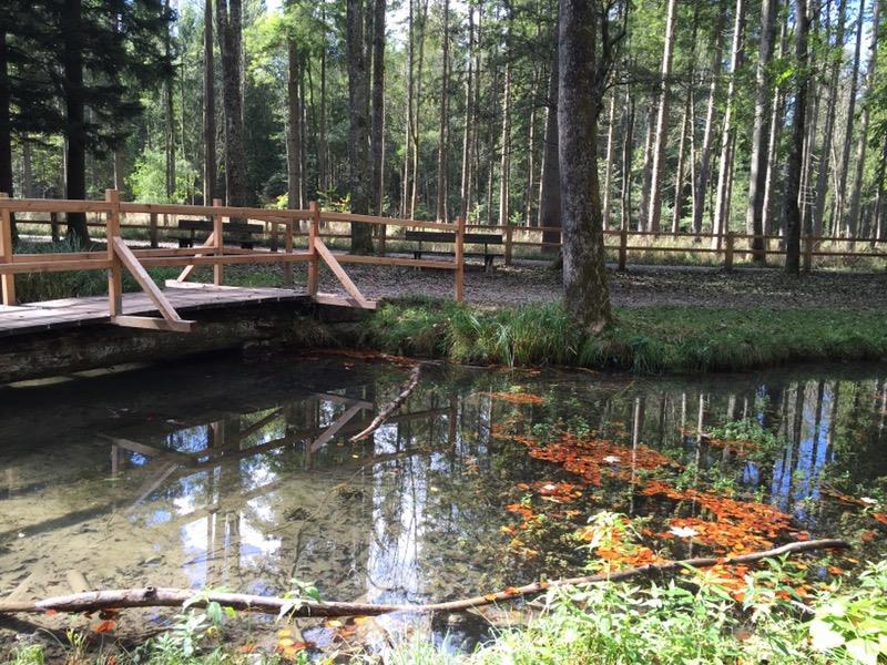 landsberg-am-lech_wildpark-landsberg
