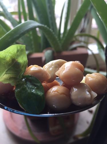 Pimp' yo salad – Augsburg-Style: schnell, lecker, einfach