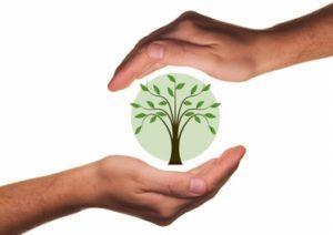 Vom Strampler bis zur Strumpfhose: Bio, fair, nachhaltig – Fehlanzeige Teil 1
