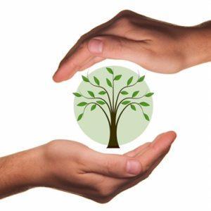 Vom Strampler bis zur Strumpfhose: Bio, fair, nachhaltig – Fehlanzeige Teil 2