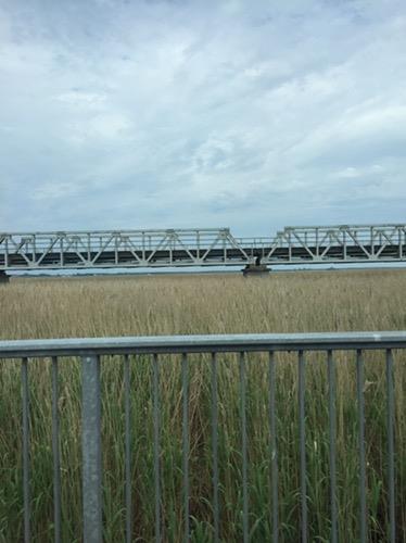 Blogserie Ostseeurlaub – Seeluft Ahoi oder Experiment Mückenabwehr