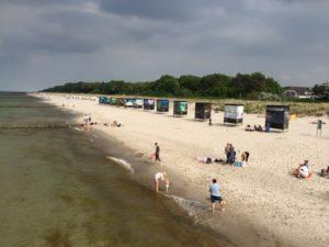 Blogserie Ostseeurlaub – Trutzburg der Mücken und Abtauchen in Prerow