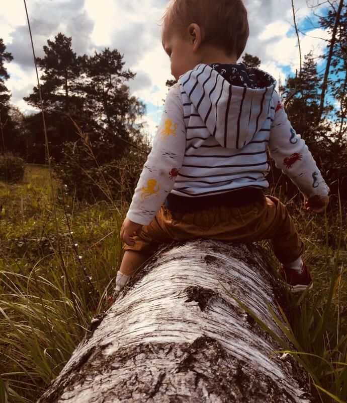 Augsburg mit Kind – 20 Ziele für Familien