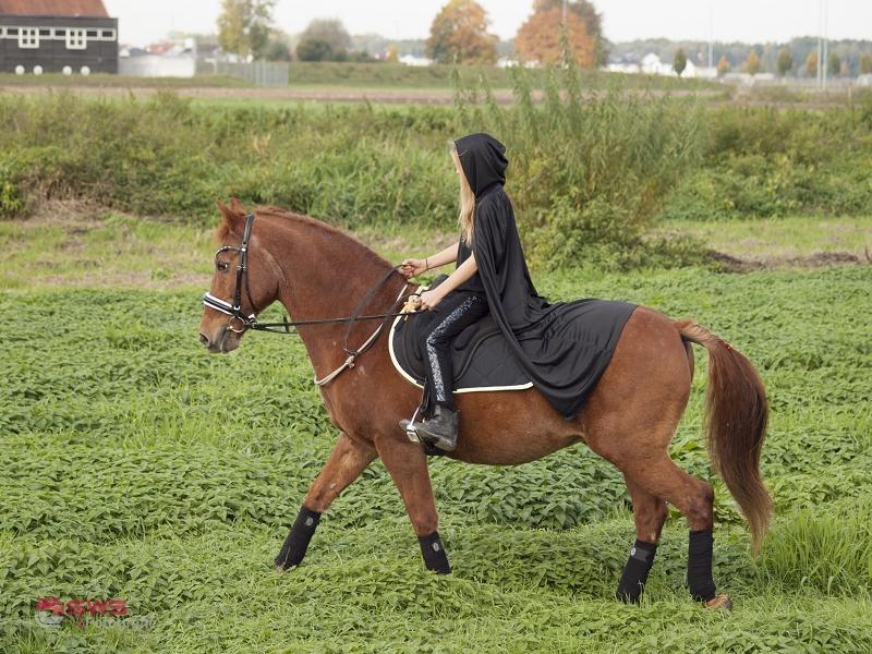 pferdeblog_reitunterricht-für-kinder