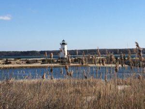 Reisebericht Marthas Vineyard – Trauminsel vor Cape Cod
