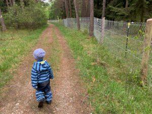 19 grüne Schätze für Familien mit Kindern in und um Augsburg – Natur entdecken mit Kindern