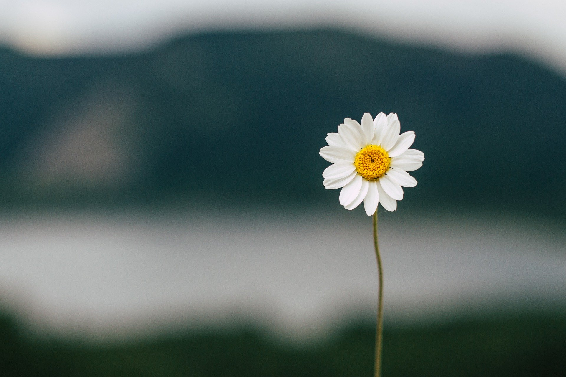Eskalationen, Egoismus & Ellenbogengesellschaft – die Welt, in der die Kinder leben