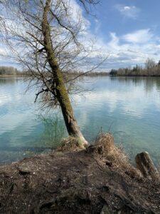 weitmannsee-kissing_ausflug-familie-augsburg