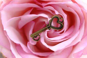 Read more about the article Vibrator statt Blumen