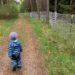 augsburg-kinder-natur_ausflug-tipp-augsburg_augsburg-mit-kindern